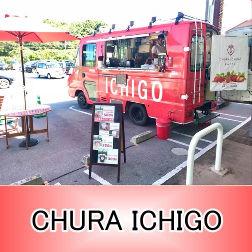 沖縄移動販売 沖縄移動販売車 キッチンカー